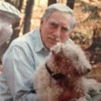 Donald F Guzman