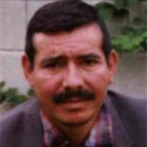 Luis A Vanegas