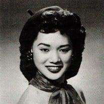Sylvia Fenasci