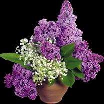 Violet May King