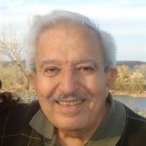Hosny Hakim