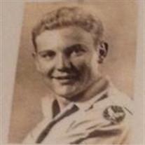 Robert Emil Siebeking
