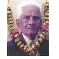 Raojibhai P Amin