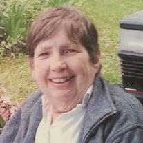 Patricia Anne  McAllister