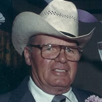 Alva D Haston Jr.