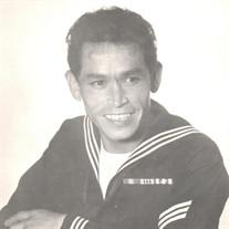 Mr. Adolfo  Dominguez Lopez