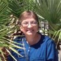 Sue A. Volz