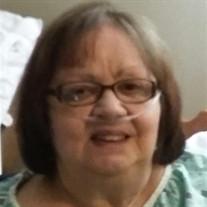 Patricia Sue Kroeger