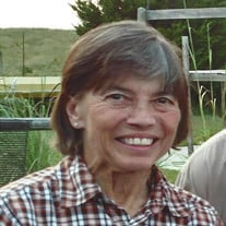 Penny L. Hulsey