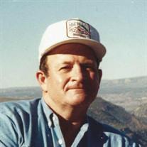 Joe N. Coleman
