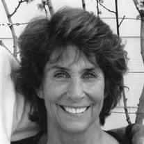 Emily Meyer Zook