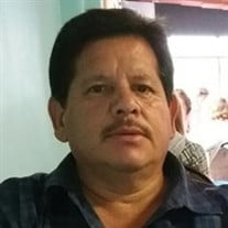 RICARDO SOLIS HERNANDEZ