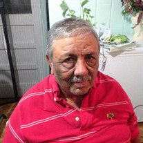 Mr. Adrian Hernandez-Sotelo