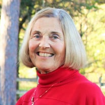 Darlene P.  Weber