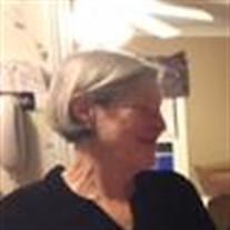 Nancy Ann Bauer