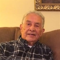 Mr. Julio  Herrera Palta