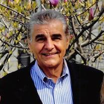 Mr. Svetoslav Saric
