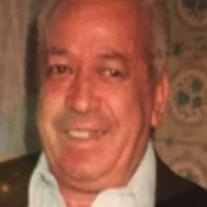 Mr. Manuel Lima Gil