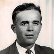Mr.  Dragoljub Simic