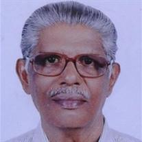 Mathew Skariah Vilayaseril