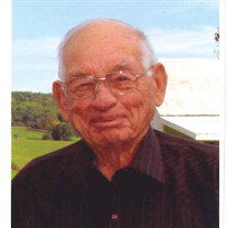 Robert D Schmidt
