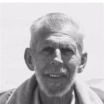 Lloyd D Andriesen