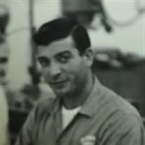 Florian Stoenica