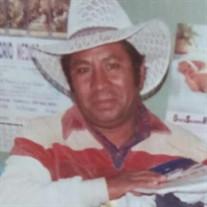 Teodoro Campos-Villa