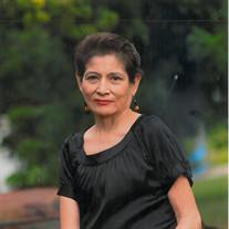 Anita Sue Powell