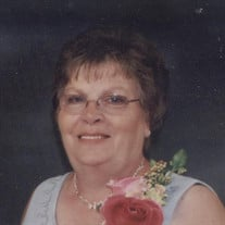 Susan M. Lentner