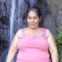 Magdelina Valdovinos Alvarez