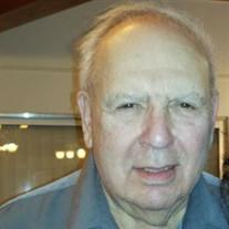 Jerry L.  Goldstein
