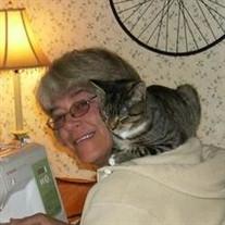 Mrs. Tammy T. Houle