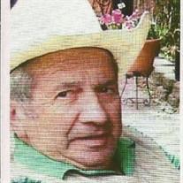 Pedro Martin Salaverri Cilveti