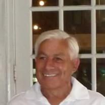 Martin L Peters
