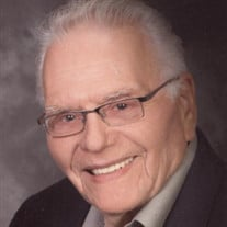 Mr. Peter Bezemer