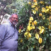 Sattanand Tiwari