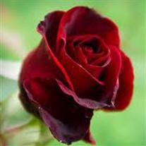 Rose Castoro Caivano