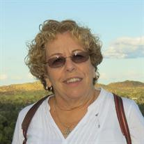 Evelyn  P Farkas