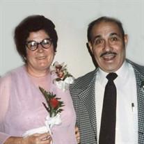 Mr. ANTONIO PEREZ SOLIS