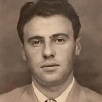 Seymour S Hornik