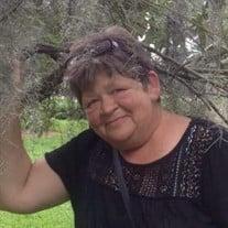 Shelia Ann Ballenger