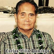 Carlos Villa  Domingo