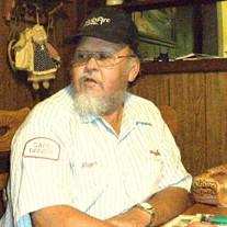 Mr. Roger Austin