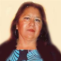 Angelica  Flores  Camacho