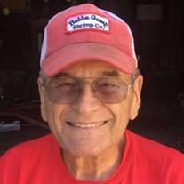 Gary E. Paust