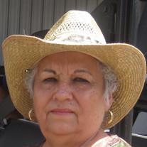 Noelia M. Arredondo