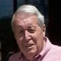 Dale W. Merrill