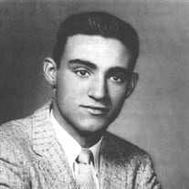 Mr. Robert J Haubrich