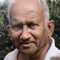 Pramod J. Mehta